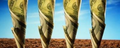Выкуп участка-приватизация