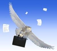 Договор безвозмездной регистрации в квартире