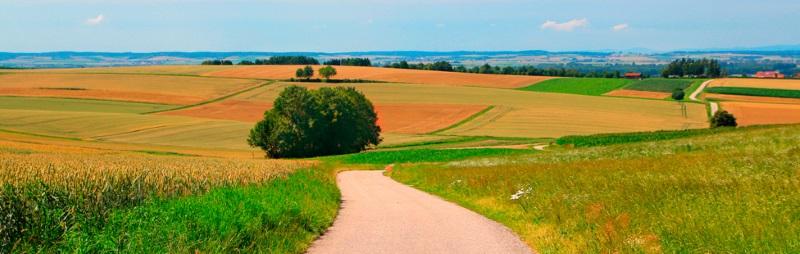 Аренда земельных участков