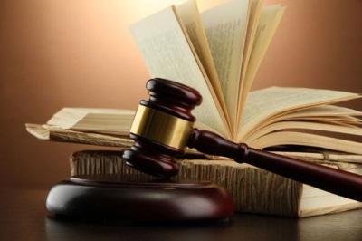 Приватизация по суду